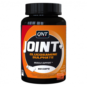 QNT - Joint+